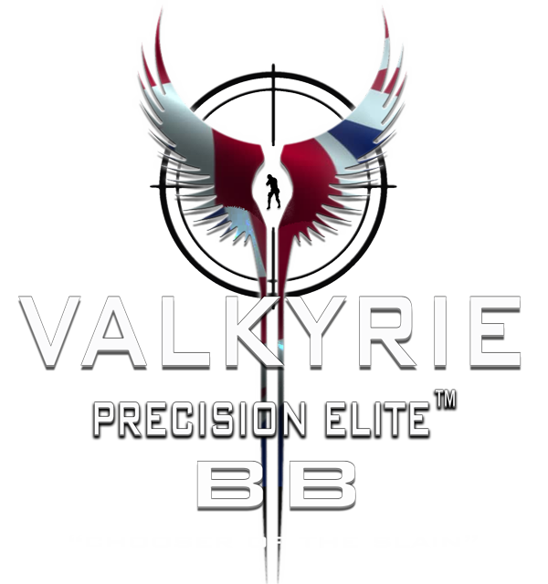 Valkyrie Airsoft