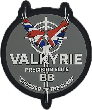 Exclusive Valkyrie Patch